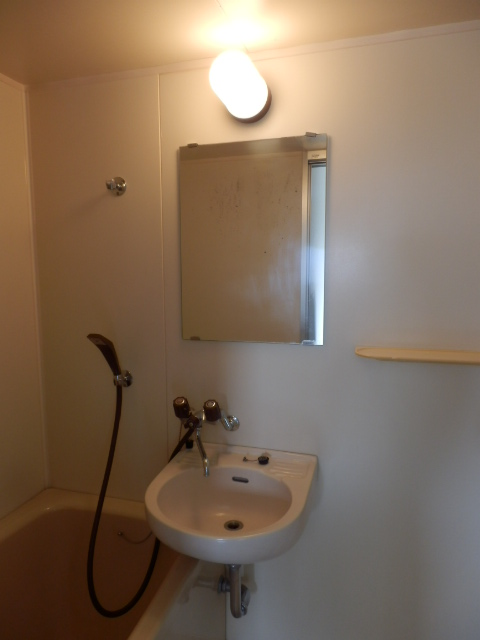 ハイツ霜越 303号室の洗面所