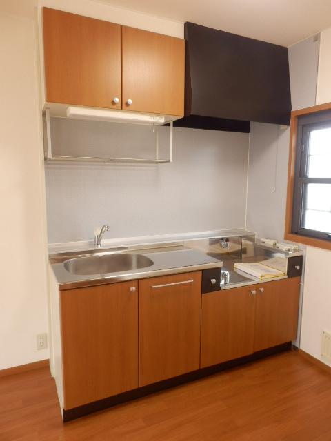 プレミール泉 203号室のキッチン