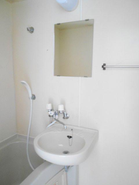 ハイツぐるーびー 201号室の洗面所