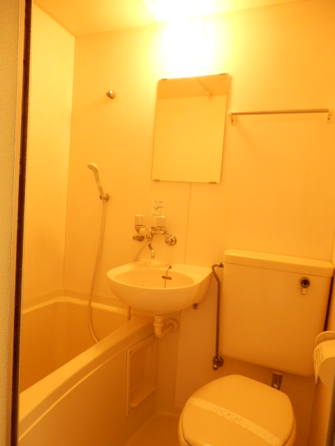 ウィルハイム 202号室の洗面所