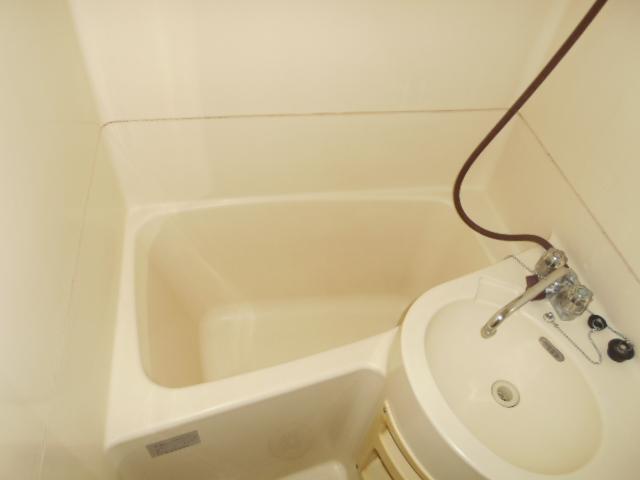 ジュネパレス春日部第8 102号室の風呂