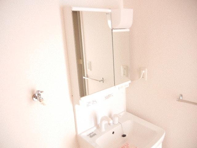 パークサイドジョイ 03020号室の洗面所