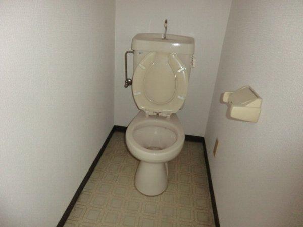 ハイグレージュM 302号室のトイレ