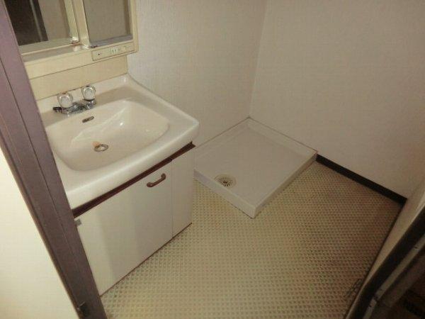 ハイグレージュM 302号室の洗面所