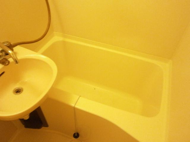 セントラルフラット多摩平 202号室の風呂