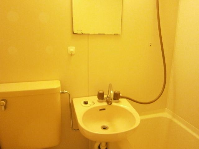 セントラルフラット多摩平 202号室の洗面所