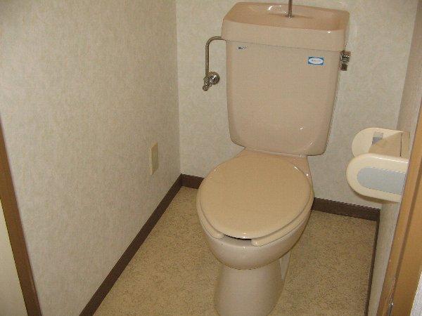 インビック上宿 302号室のトイレ