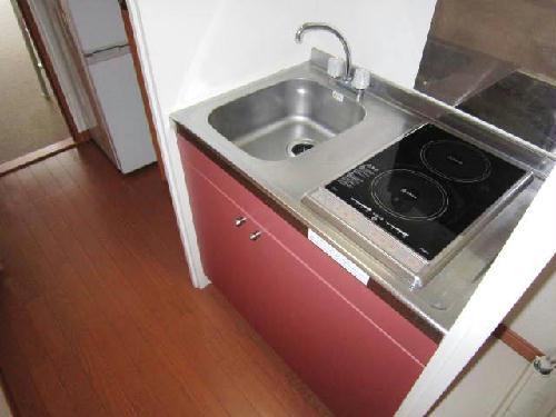 レオパレスフラッツスクエアⅡ 203号室のキッチン
