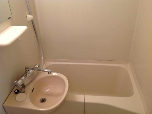レオパレス内田 208号室の風呂