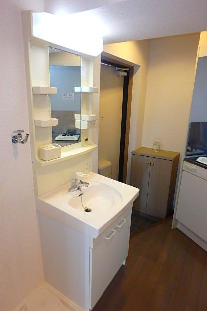 サンホン平安 405号室の洗面所