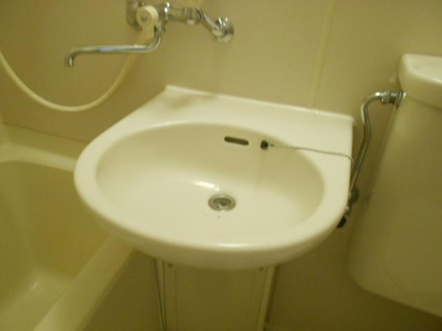 コートビレッジ桜ヶ丘パートⅡ B104号室の洗面所