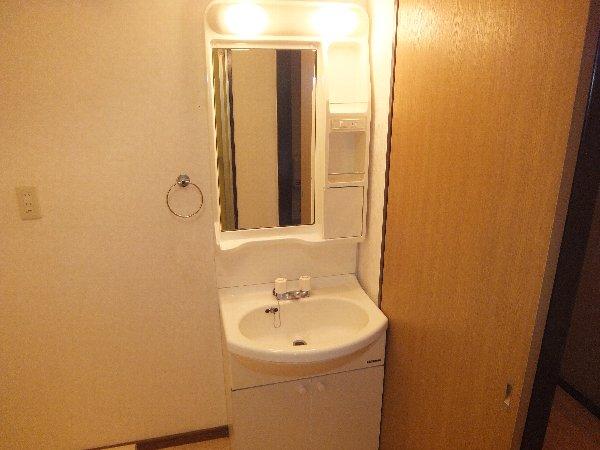 リンピア堀田 303号室の洗面所