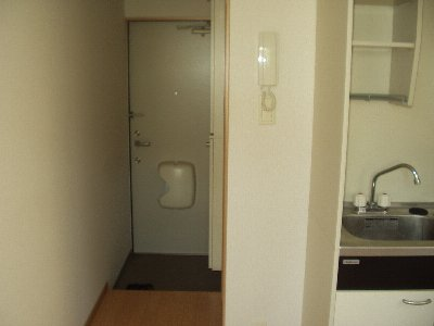 第九コーポ青木 201号室の玄関