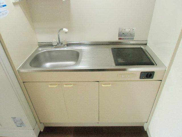 エーデルハイム花染 307号室のキッチン