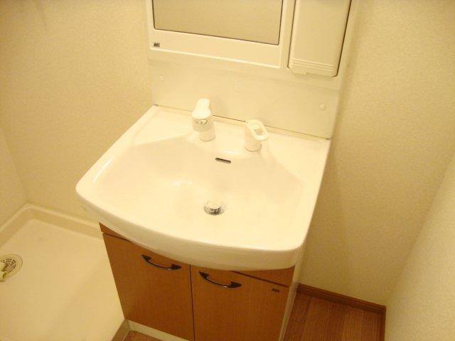 ロイヤルパーク旭 202号室の洗面所