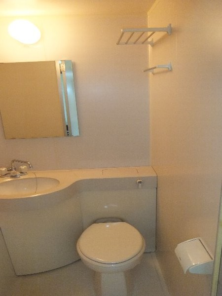 新清洲クラウンビル 302号室のトイレ