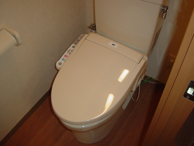 グランドコート弥生 105号室のトイレ