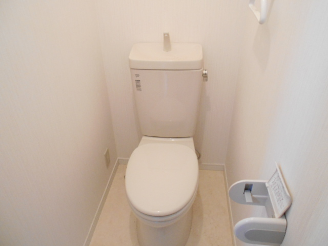 ハイランドハイツ 201号室のトイレ