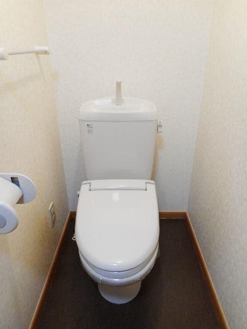 ハイライズ ミズキ 02020号室のトイレ