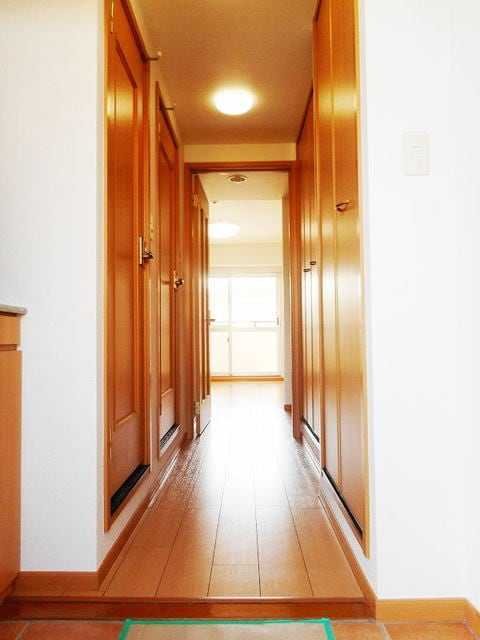 ハイライズ ミズキ 02020号室の玄関