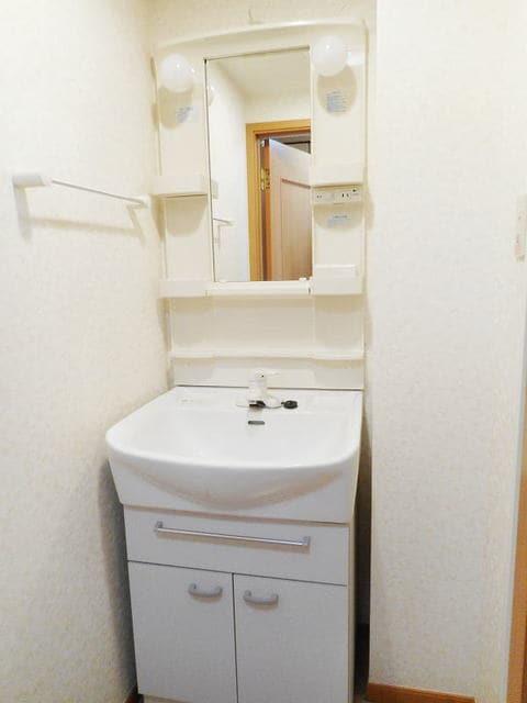 ハイライズ ミズキ 02020号室の洗面所