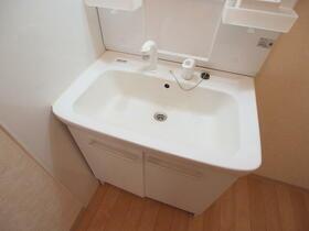 パピヨン渓北 0501号室の洗面所