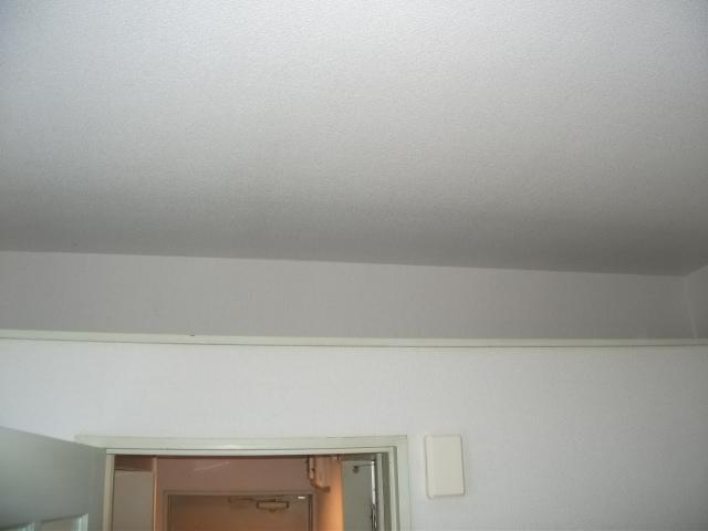 インベストメント宮下本町Ⅱ 101号室の居室