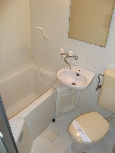 インベストメント宮下本町Ⅱ 101号室のトイレ