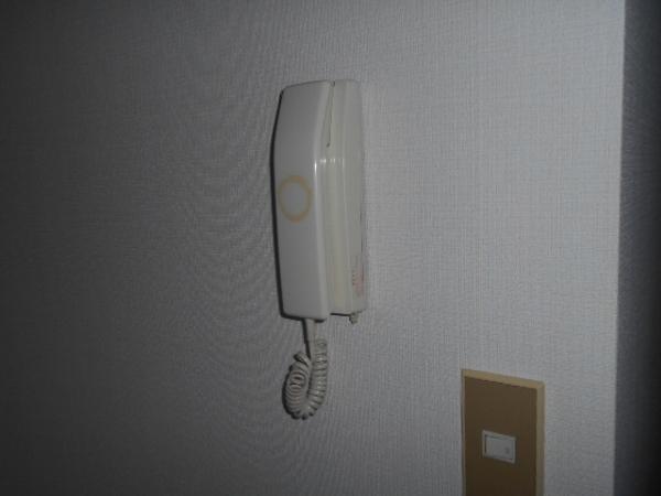 大口平和マンション 4B号室のセキュリティ