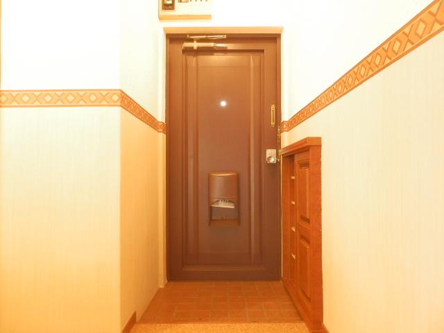 サングリーン昭島 203号室の玄関