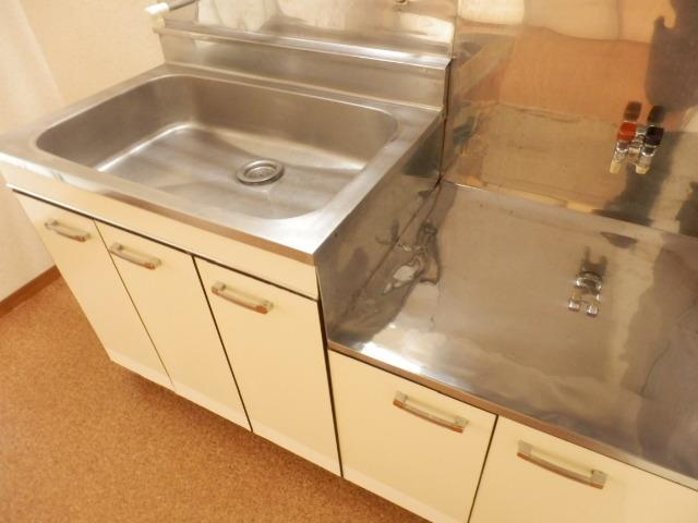 サングリーン昭島 203号室のキッチン