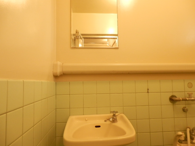 サングリーン昭島 203号室の洗面所