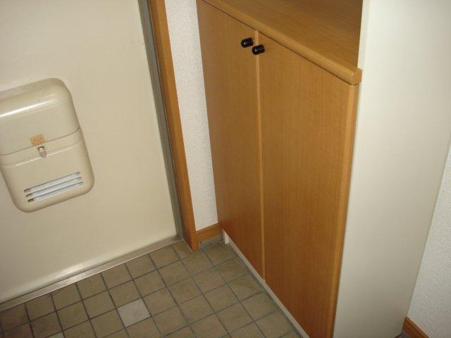 ルミナス11 302号室の玄関
