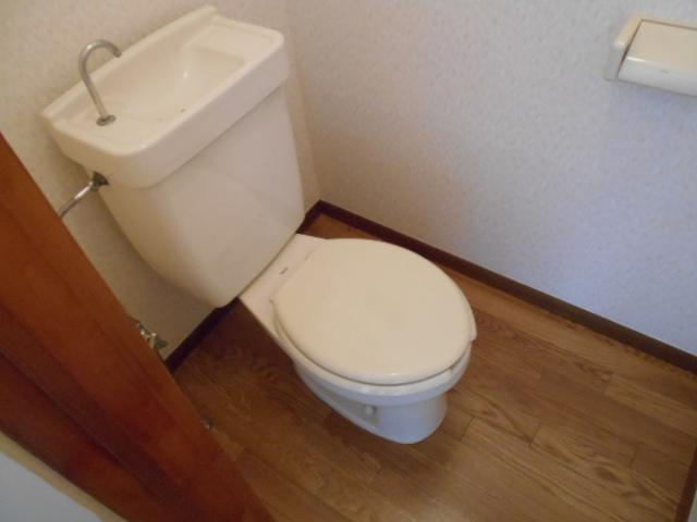 サンシティハイツ斉藤 203号室のトイレ
