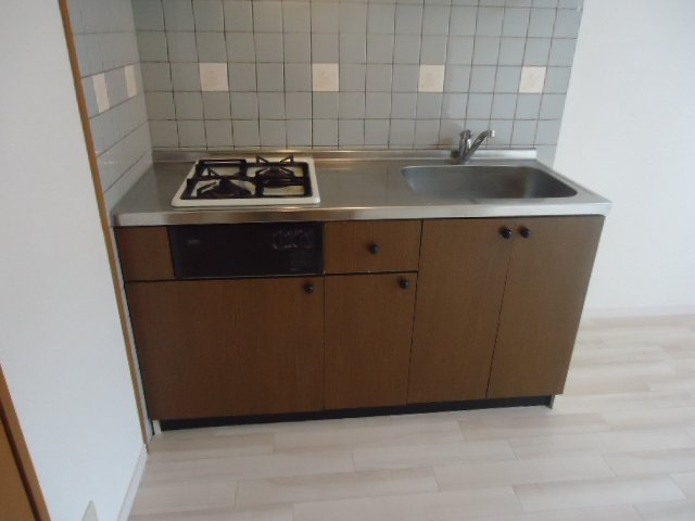 ルミナス11 202号室のキッチン