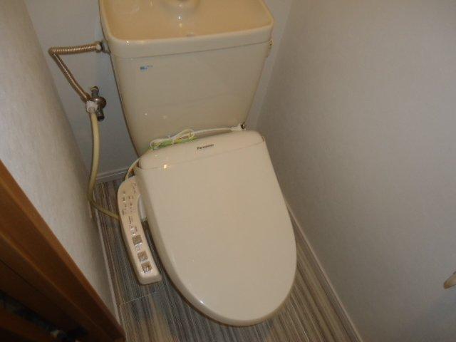 ルミナス11 202号室のトイレ