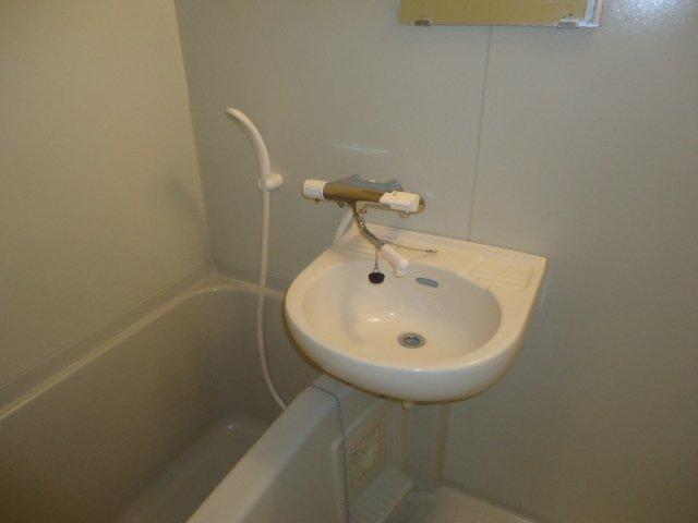 ルミナス11 202号室の洗面所