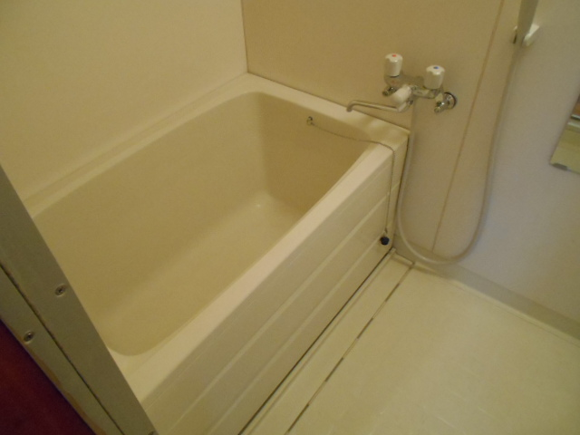 サンシティハイツ斉藤 201号室の風呂