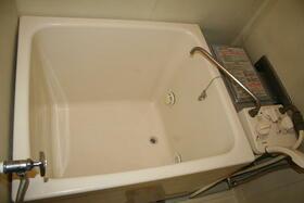 サンアイランド上野田 101号室の風呂