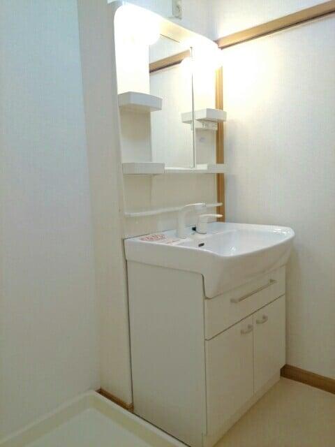フロ-レゾンⅡ 02030号室の洗面所