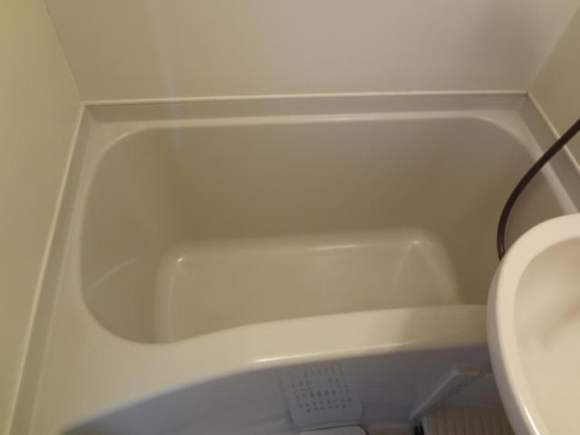 ぶるうめんはいむなかの 203号室の風呂