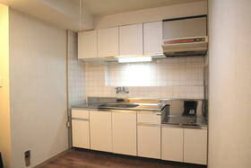 サンシャイン花沢 102号室のキッチン
