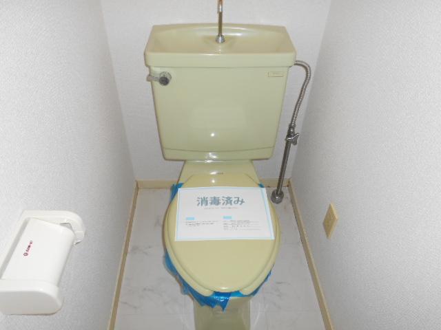 カステルセゾン 301号室のトイレ
