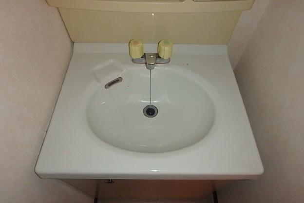 グランドステータス林 304号室の洗面所