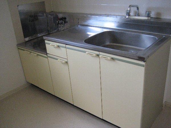 レピュート勝川Ⅱ 204号室のキッチン