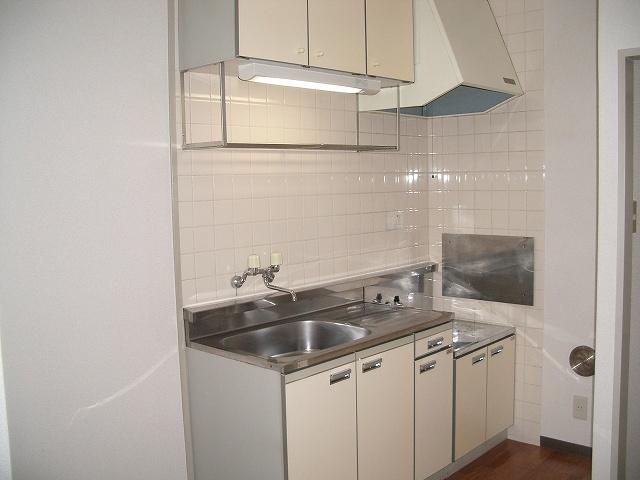 ランドロードヌマタA 02030号室のキッチン