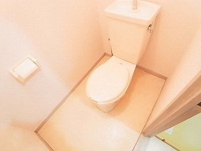 ランドロードヌマタA 02030号室のトイレ