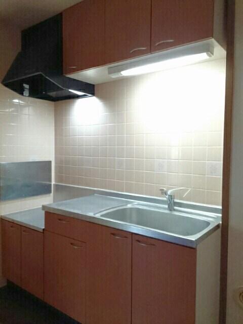 ロイヤルメゾンD 01020号室のキッチン