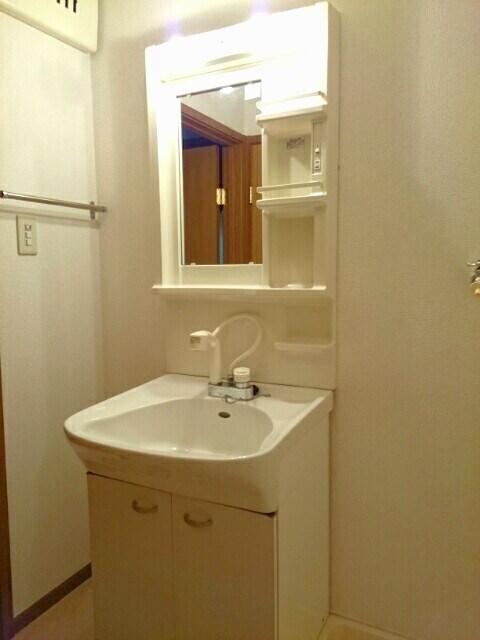 ロイヤルメゾンD 01020号室の洗面所