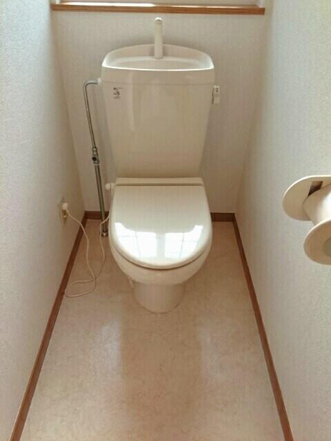 ロイヤルメゾンD 01020号室のトイレ